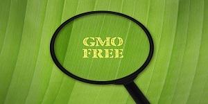转基因食品测试(GMO)