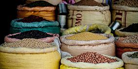 FSPCA人类食品预防性控制措施