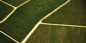 食品安全体系认证内审员-食品生产方向