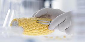 食品中添加剂及违禁物质检测
