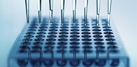 PCR技术动物源成分测试