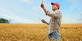 农产食品认证服务
