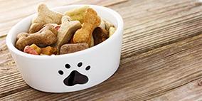 宠物食品检验测试服务