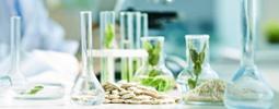 茶叶农药残留检测套餐
